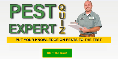 Start The Pest Expert Quiz