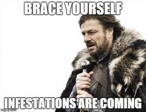 GoT Infestations